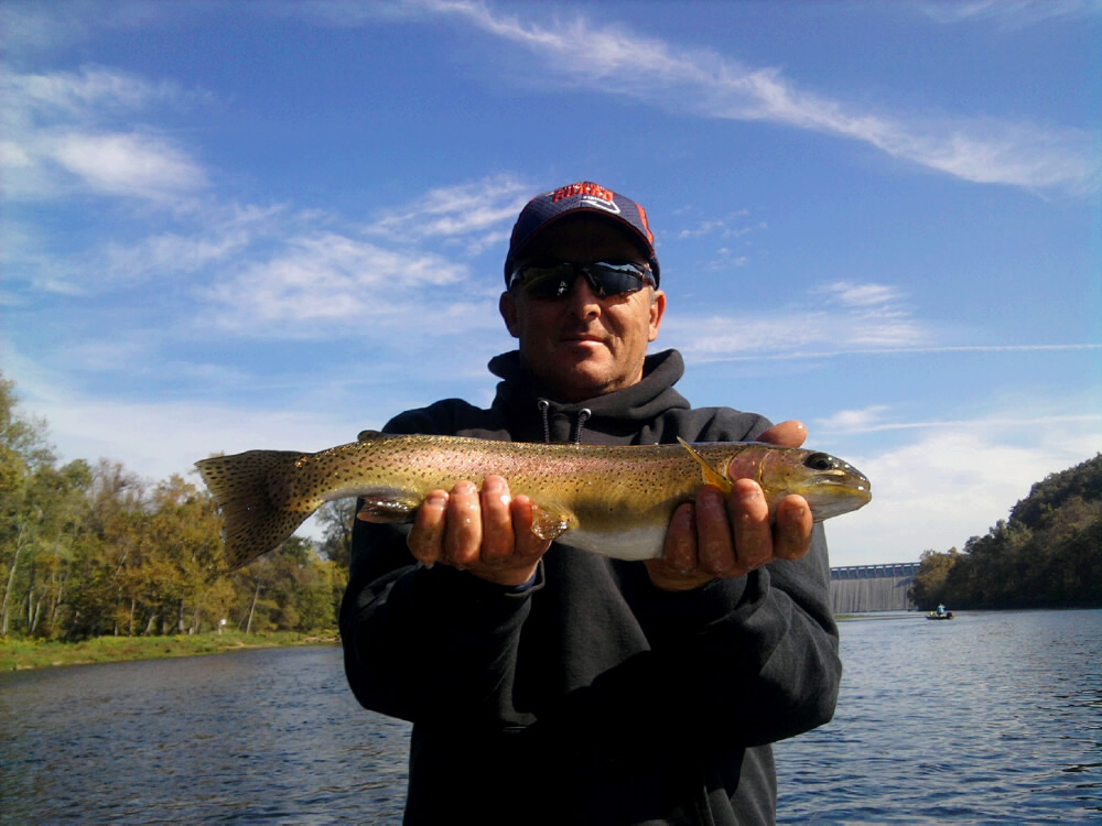 Big phil white river fishing report 10 12 10 10 19 10 for Colorado river fishing report