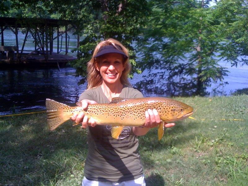 Big phil 39 s white river fishing report bull shoals lake for Arkansas game and fish forecast