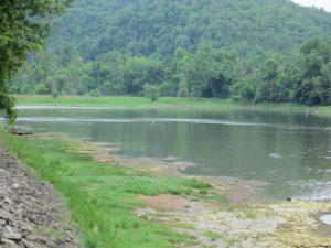 Bull Shoals White River State Park Downstream River View