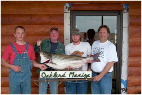 Oakland Marina Record Fish